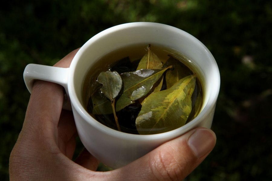 Coca tea besides being tasty can help with altitude sickness. Almost every corner store will sell it and almost every hotel will give it out free. Photo: Alex Washburn