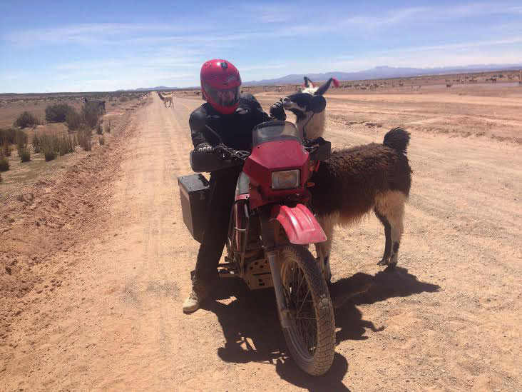 Alex makes friends with the rural lama. Photo: Nathaniel Chaney